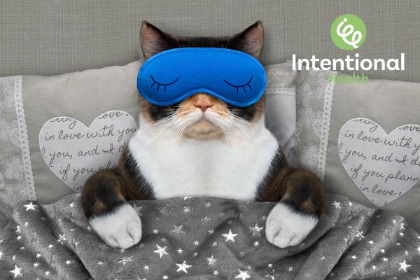 Cat wearing a sleeping mask